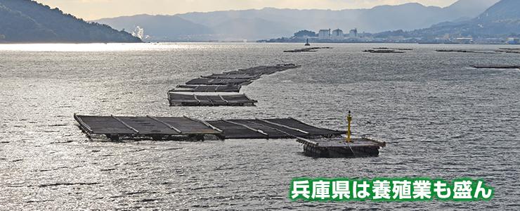 兵庫県は養殖業も盛ん