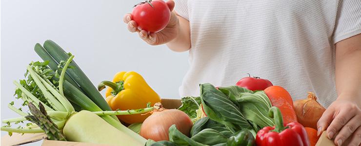 ふるさと納税返礼品の野菜